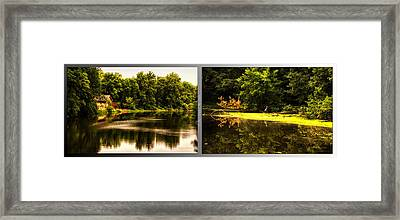 Nature Center 01 Looking For Breakfast Fullersburg Woods 2 Panel Framed Print by Thomas Woolworth