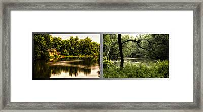 Nature Center 01 Tree Silhouette Fullersburg Woods 2 Panel Framed Print by Thomas Woolworth