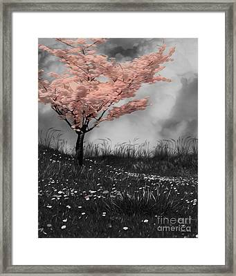 Nature Framed Print by Cheryl Young