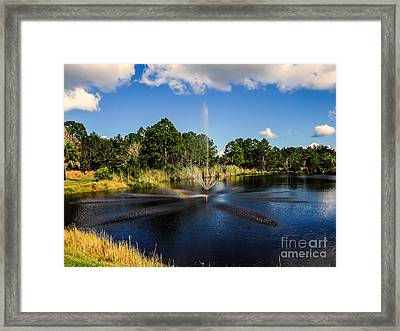 Nature In Florida Framed Print by Zina Stromberg