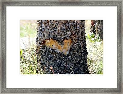 Nature Is In My Heart Framed Print by Fiona Kennard