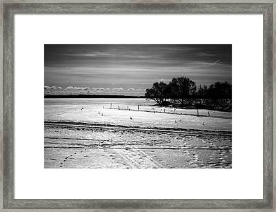 Nature Series 1.5 Framed Print by Derya  Aktas