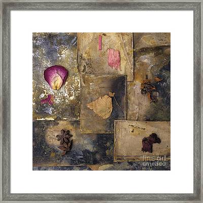 Nature Variety Framed Print by Bernard Jaubert
