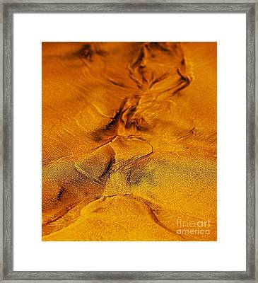 Natures Abstract Framed Print by Blair Stuart