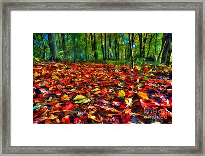 Natures Carpet In The Fall Framed Print by Dan Friend