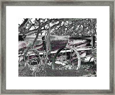 Nature's Embrace Framed Print by Will Borden