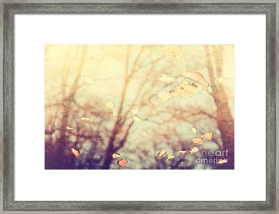 Nature's Golden Reflections Framed Print by Natalie Kinnear