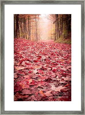 Nature's Red Carpet Revisited Framed Print by Edward Fielding