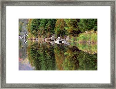 Natures Reflection Framed Print by Mark Papke