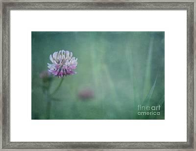 Natures Scent Framed Print by Priska Wettstein