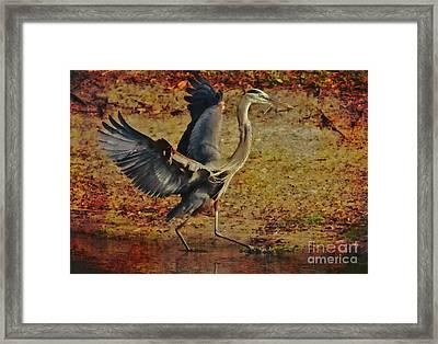 Natures Winged Grace Framed Print by Deborah Benoit