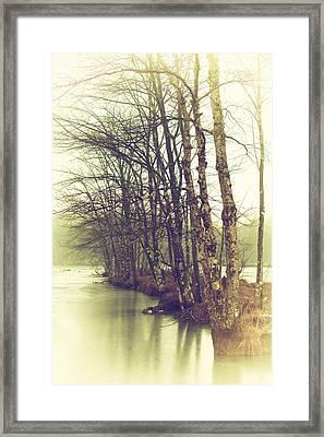 Natures Winter Slumber Framed Print by Karol Livote