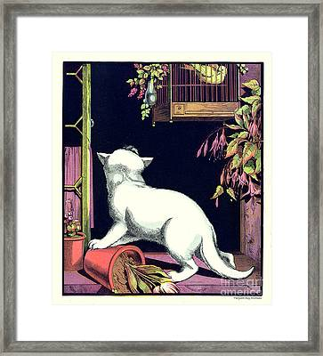 Naughty Cat Eyes A Yellow Bird In Cage Framed Print by Pierpont Bay Archives