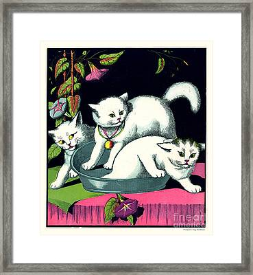 Naughty Cats Play In Tub On Table With Morning Glories Framed Print by Pierpont Bay Archives