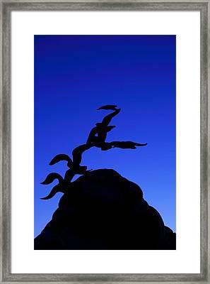 Navy Merchant Marine Memorial Framed Print by Metro DC Photography