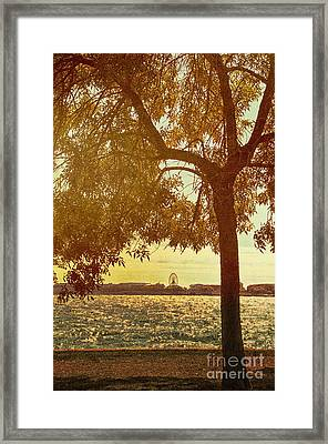 Navy Pier From Park Framed Print by Margie Hurwich