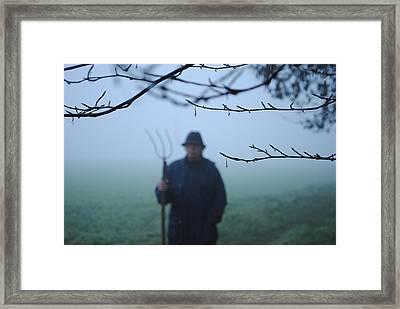 Nebbia Framed Print by Alex Spinello