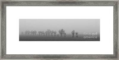 Nebbia Framed Print by Michele Messina