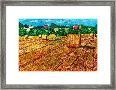 Nebraska Framed Print by Alene Sirott-Cope