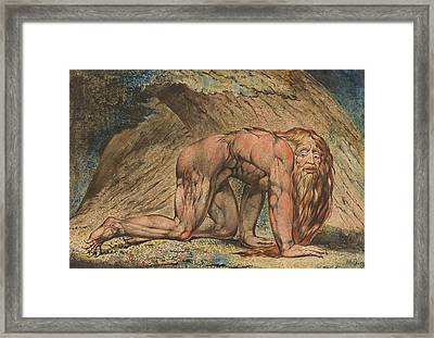 Nebuchadnezzar Framed Print by William Blake