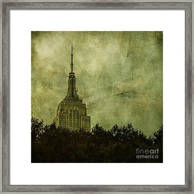 Needle Point Framed Print by Andrew Paranavitana