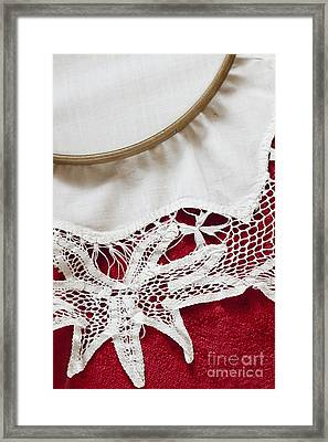 Needlepoint Beginnings Framed Print by Margie Hurwich