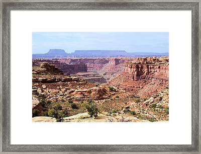 Needles Grand Canyon Framed Print by Adam Jewell