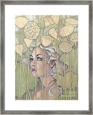 Nelumbo Framed Print by Fay Helfer