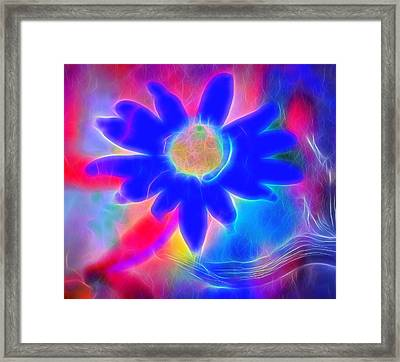 Neon Flower Framed Print by Dan Sproul