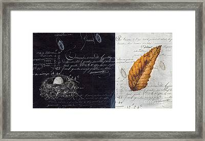 Nest Egg Framed Print by Edward Fielding