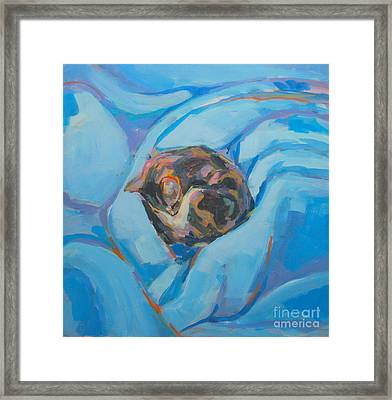 Nest Framed Print by Kimberly Santini