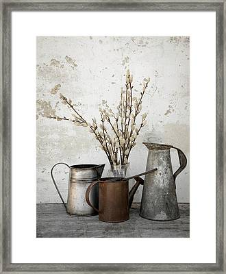 Neutral Framed Print by Robin-lee Vieira
