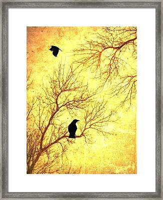 Nevermore Framed Print by Dan Sproul