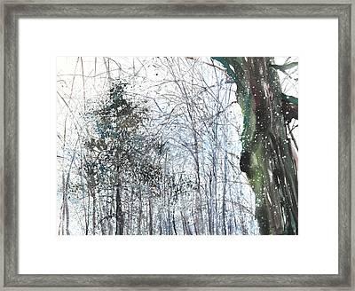 New England Landscape No.224 Framed Print by Sumiyo Toribe