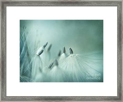 New Generation Framed Print by Priska Wettstein