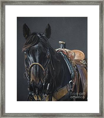 New Guy On The Job Framed Print by Joni Beinborn