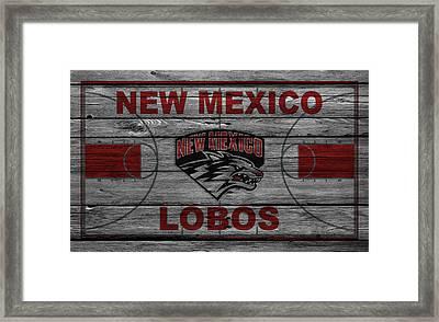 New Mexico Lobos Framed Print by Joe Hamilton