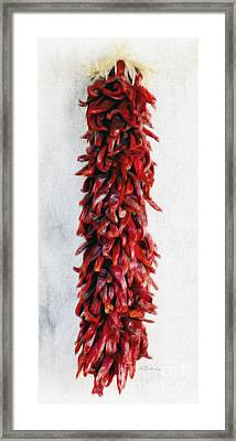 New Mexico Red Chili Art Framed Print by Barbara Chichester