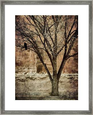 New Mexico Winter Framed Print by Carol Leigh