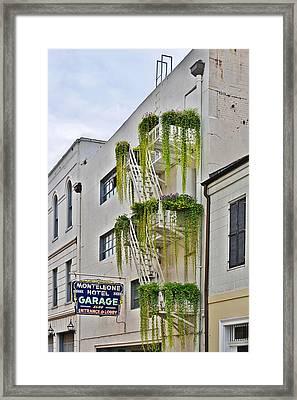 New Orleans Balcony Gardens Framed Print by Christine Till