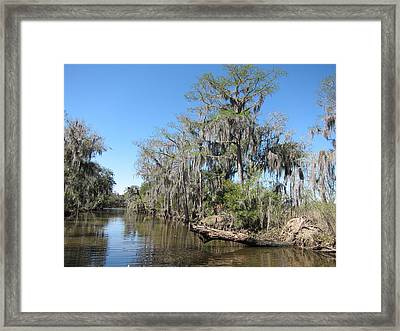 New Orleans - Swamp Boat Ride - 1212125 Framed Print by DC Photographer