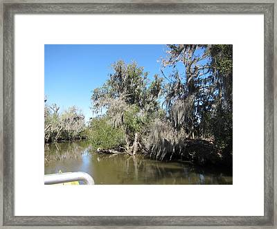 New Orleans - Swamp Boat Ride - 1212141 Framed Print by DC Photographer