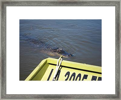 New Orleans - Swamp Boat Ride - 121278 Framed Print by DC Photographer