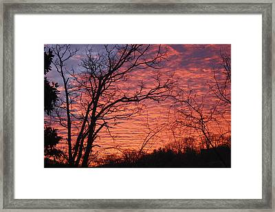 New Year Eve Sunrise Framed Print by Teresa Mucha