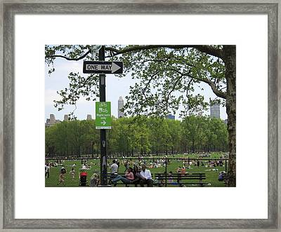 New York City - Central Park - 121223 Framed Print by DC Photographer
