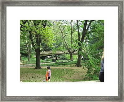 New York City - Central Park - 121226 Framed Print by DC Photographer
