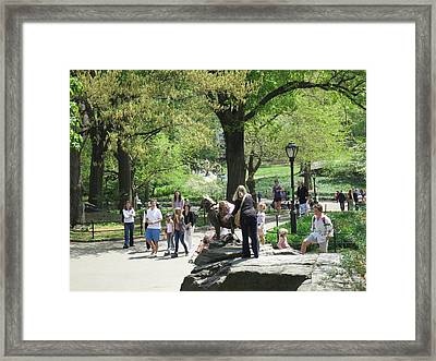 New York City - Central Park - 12127 Framed Print by DC Photographer