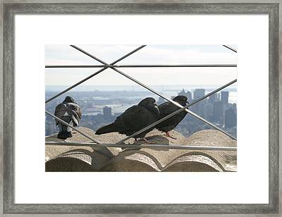 New York City - View From Empire State Building - 121224 Framed Print by DC Photographer