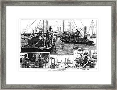 New York Oysters, 1886 Framed Print by Granger