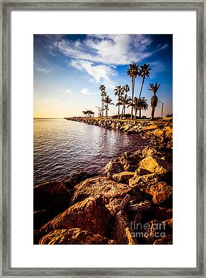 Newport Beach Jetty Picture At Jetty View Park Framed Print by Paul Velgos